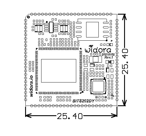 ssd202d-2021-01-03.png